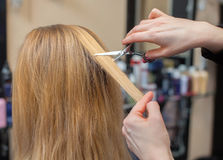 De kapper doet een kapsel met schaar van haar aan een jong meisje, een blonde stock afbeeldingen