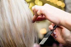 De kapper houdt een haarlok Stock Foto