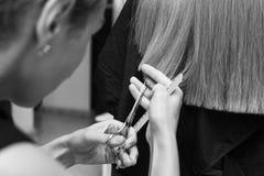 De Kapper snijdt het haar van een cliënt bij het close-up van de schoonheidssalon stock afbeelding