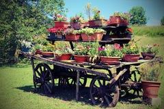 De kar festooned met potten van bloemen in de weide in mountai Stock Foto