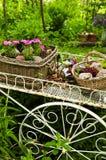 De kar van de bloem in tuin Stock Afbeeldingen