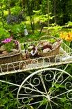 De kar van de bloem in tuin Royalty-vrije Stock Afbeeldingen