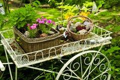 De kar van de bloem in tuin Stock Fotografie