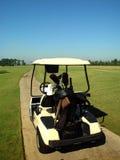 De Kar van het golf stock foto