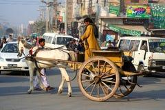 De kar van het paard in de stad Stock Foto's