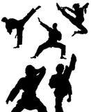 De karate stelt Waanzin Stock Illustratie