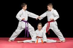 De Karatevechtsporten van groepsjonge geitjes Royalty-vrije Stock Afbeeldingen