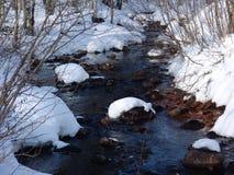 De Karelische lente Stock Afbeeldingen
