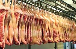 De karkassen van het varkensvlees Stock Afbeeldingen
