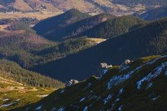 De Karpaten in de vroege lente Stock Afbeelding