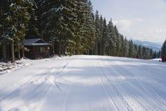 In de Karpaten op Bukovelya stock fotografie