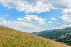 De Karpaten Oryavchyk Stock Foto's