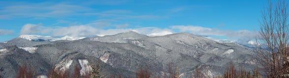 De Karpatische bergen van de de winterochtend, de Oekraïne stock foto's