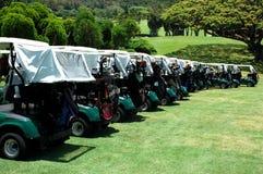 De Karren van het golf Stock Foto
