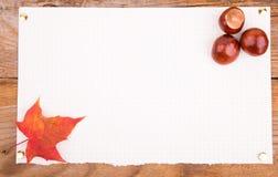 De kastanje van Autumn Background whith en esdoornblad Stock Foto's