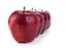 De kastanjebruine appelen stelden op een rij close-up op Royalty-vrije Stock Foto's