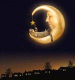 De kat en de maan Stock Afbeeldingen