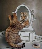 De kat kijkt in spiegel 3 stock foto's