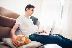 De kat ligt thuis op een hoofdkussen dichtbij zijn meester met laptop royalty-vrije stock foto's