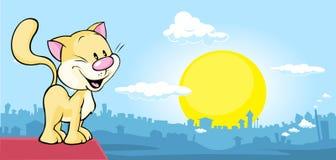 De kat is op het dak en het letten van de op stad bij zonsondergang Royalty-vrije Stock Afbeeldingen