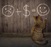 De kat schrijft een grappige wiskundevergelijking op een omheining royalty-vrije stock afbeeldingen