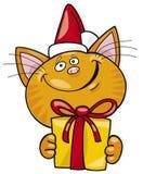 De kat van de kerstman met gift Stock Foto's
