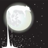 De kat van de maan Stock Foto's