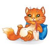 De kat van de melk Royalty-vrije Stock Afbeeldingen