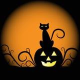 De Kat van de Pompoen van Halloween Royalty-vrije Stock Afbeelding