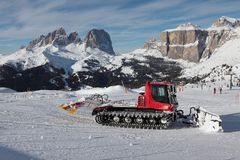 De kat van de sneeuw bij Italiaanse dolomiti Royalty-vrije Stock Foto