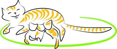 De kat van de verzorging Stock Afbeeldingen