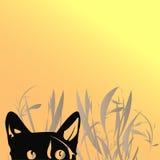 De kat van Grunge Stock Foto's