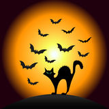 De Kat van Halloween Scarry Royalty-vrije Stock Afbeeldingen