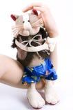 De kat van het stuk speelgoed Stock Foto's