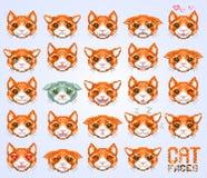 De kat ziet emoticon onder ogen Royalty-vrije Stock Afbeelding