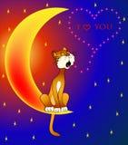 De kat zingt zitting op maan Stock Foto's