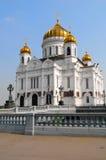 De kathedraal Stock Fotografie