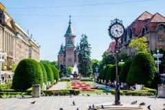 De kathedraal die in zeer oud maar zeer mooie Timisoara wordt gevestigd, stock afbeelding
