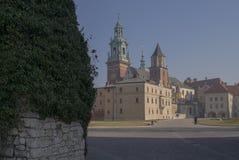 De Kathedraal en het Kasteel van Krakau Wawel Stock Afbeeldingen