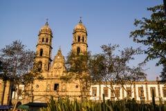 De Kathedraal Jalisco Mexico van Guadalajara Zapopan Catedral Stock Fotografie