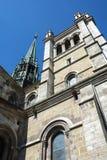 De Kathedraal St Pierre van Genève Stock Fotografie