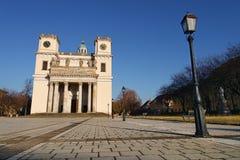 De kathedraal in Vac, Hongarije Stock Afbeeldingen