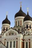 De Kathedraal van Alexander Nevsky's in Tallinn Stock Afbeelding