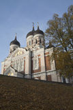 De Kathedraal van Alexander Nevsky's in Tallinn stock foto
