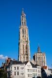 De Kathedraal van Antwerpen Stock Foto's