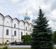 De Kathedraal van Blagoveshchensky Royalty-vrije Stock Fotografie