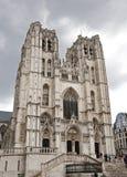 De kathedraal van Brussel Stock Foto