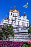 De kathedraal van Christus de Redder royalty-vrije stock afbeelding