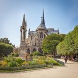 De kathedraal van de Notredame Stock Afbeelding
