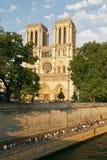 De kathedraal van de Notredame royalty-vrije stock afbeelding
